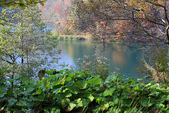 上湖區_十六湖國家公園 Plitvice Lakes N.P_克羅埃西亞Croatia:_5D30222_b.jpg