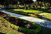 台北市大安森林公園_光影:_MG_9429_a_b.jpg