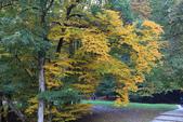 上湖區_十六湖國家公園 Plitvice Lakes N.P_克羅埃西亞Croatia:_5D30389_b.jpg