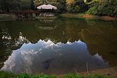 櫻花_阿里山:_MG_5400_1_a_b.jpg