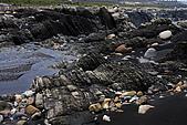 竹山濁水溪河床:_MG_5785_1_a_b.jpg