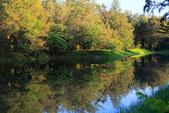 台東_琵琶湖_美麗的倒影:_D6A9099_b.jpg