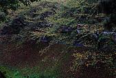 名古屋:_MG_7102_a_b.jpg