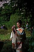 日本京都平安神宮_粉紅垂櫻:_MG_2141_b.jpg