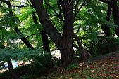 名古屋:_MG_7106_a_b.jpg