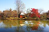 輕井澤_中輕_鹽澤湖:_MG_8186_a_b.jpg