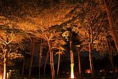 台南市民生綠園:_MG_4734_b.jpg