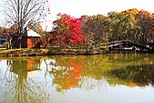 輕井澤_中輕_鹽澤湖:_MG_8187_a_b.jpg