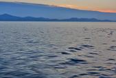 札達爾 Zadar_克羅埃西亞Croatia:_5D30737_b.jpg