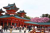 日本京都平安神宮_粉紅垂櫻:_MG_2126_b.jpg