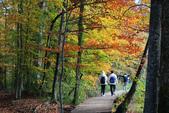 上湖區_十六湖國家公園 Plitvice Lakes N.P_克羅埃西亞Croatia:_5D30264_b.jpg