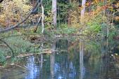 上湖區_十六湖國家公園 Plitvice Lakes N.P_克羅埃西亞Croatia:_5D30298_b.jpg