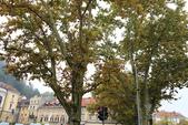 盧比安納 Ljubljana_聖方濟教堂、三重橋、聖尼古拉斯大教堂_斯洛維尼亞Slovenia:_5D39101_b.jpg