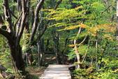 上湖區_十六湖國家公園 Plitvice Lakes N.P_克羅埃西亞Croatia:_5D30228_b.jpg