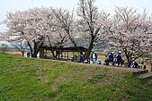 保津川_日本京都嵐山:_MG_1979_b.jpg