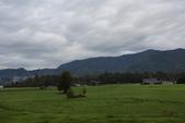 波斯托伊那鐘乳石洞Postojna_斯洛維尼亞Slovenia:_5D39497_b.jpg