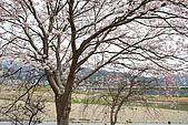 保津川_日本京都嵐山:_MG_1981_b.jpg
