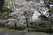 日本夙川公園:_MG_1512_b.jpg