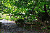 名古屋:_MG_7123_a_b.jpg
