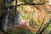 上湖區_十六湖國家公園 Plitvice Lakes N.P_克羅埃西亞Croatia:_5D30233_b.jpg