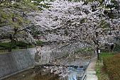 日本夙川公園:_MG_1518_b.jpg