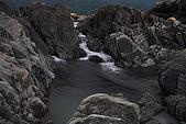 竹山濁水溪河床:_MG_5817_1_a_b.jpg
