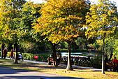 台北市大安森林公園_光影:_MG_9445_a_b.jpg