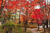 輕井澤_中輕_石頭教堂:_MG_8398-a_b.jpg