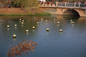 104臺南鹽水_月津港_新春花燈:_5D33211_b.jpg