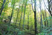 上湖區_十六湖國家公園 Plitvice Lakes N.P_克羅埃西亞Croatia:_5D30269_b.jpg