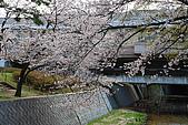 日本夙川公園:_MG_1533_b.jpg