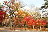 輕井澤_中輕_石頭教堂:_MG_8409_a_b.jpg