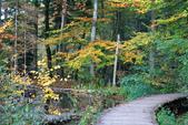 上湖區_十六湖國家公園 Plitvice Lakes N.P_克羅埃西亞Croatia:_5D30299_b.jpg