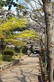 日本夙川公園:_MG_1547_b.jpg