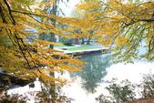 上湖區_十六湖國家公園 Plitvice Lakes N.P_克羅埃西亞Croatia:_5D30407_b.jpg
