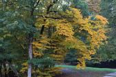 上湖區_十六湖國家公園 Plitvice Lakes N.P_克羅埃西亞Croatia:_5D30390_b.jpg
