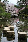 日本京都平安神宮_粉紅垂櫻:_MG_2162_b.jpg