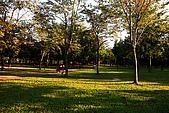 台北市大安森林公園_光影:_MG_9456_a_b.jpg