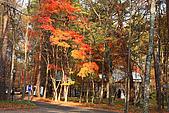 輕井澤_中輕_石頭教堂:_MG_8412_a_b.jpg