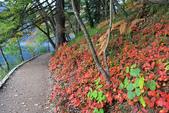 上湖區_十六湖國家公園 Plitvice Lakes N.P_克羅埃西亞Croatia:_5D30291_b.jpg