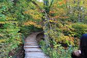 上湖區_十六湖國家公園 Plitvice Lakes N.P_克羅埃西亞Croatia:_5D30359_b.jpg