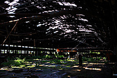 廢棄的木材工廠:_MG_5777_1_a_b.jpg