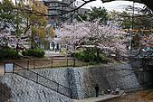 日本夙川公園:_MG_1551_b.jpg