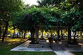 台北市大安森林公園_光影:_MG_9459_a_b.jpg