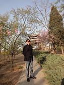 2011 中國北京:510 (1).jpg