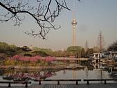 2011 中國北京:吳 20110412-05.jpg
