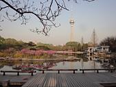 2011 中國北京:吳 20110412-06.jpg
