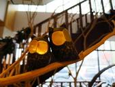 20140302_野柳海洋館_海洋科技館_銅鑼客家風味晚餐:20140302_021.jpg