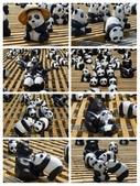 20140325_台北紙貓熊及好食雙刀流拉麵與icemonster冰:20140325_1600貓熊_合2.jpg