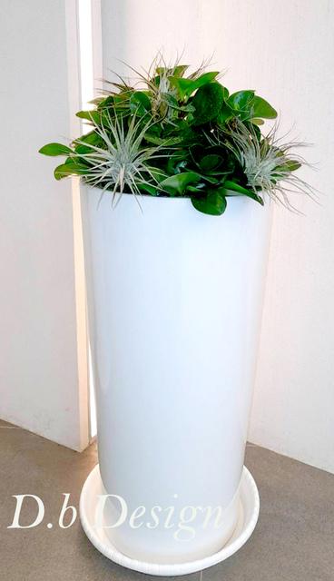 室內植物綠化 / 辦公大樓>大廳造型牆 - 室內植物綠化>辦公大樓